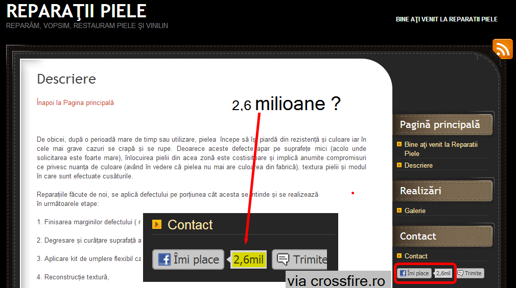 www.reparatiipiele.ro