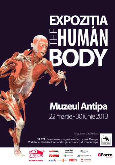 2013-human-body-antipa_sm