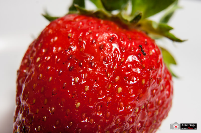 crossfire.ro-export_800px_strawberries006