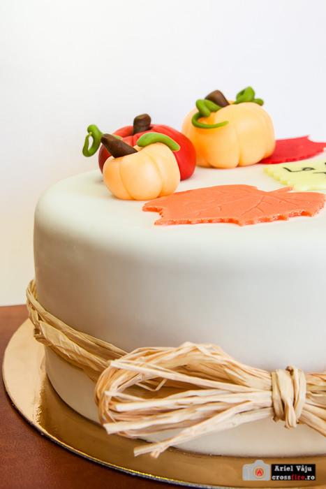 crossfire.ro-export_700px_dessert_bday_cake003